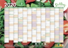 2020 5 A Day Wall Planner