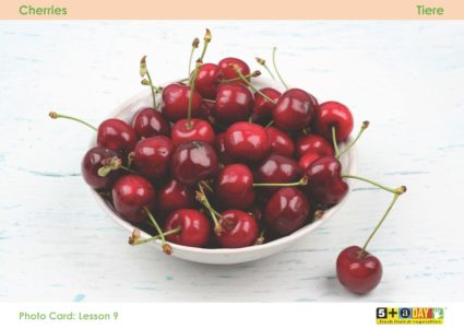 Lesson 9 Photo Card Cherries Hr